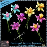 Narcissus 1 Layered Template CU